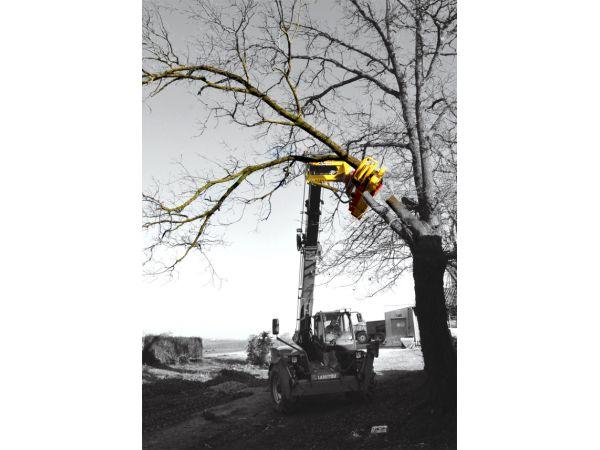Coupe-branches incliné sur télescopique