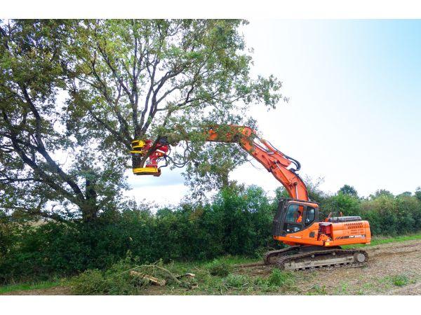 Possibilité de couper de gros volumes de branches