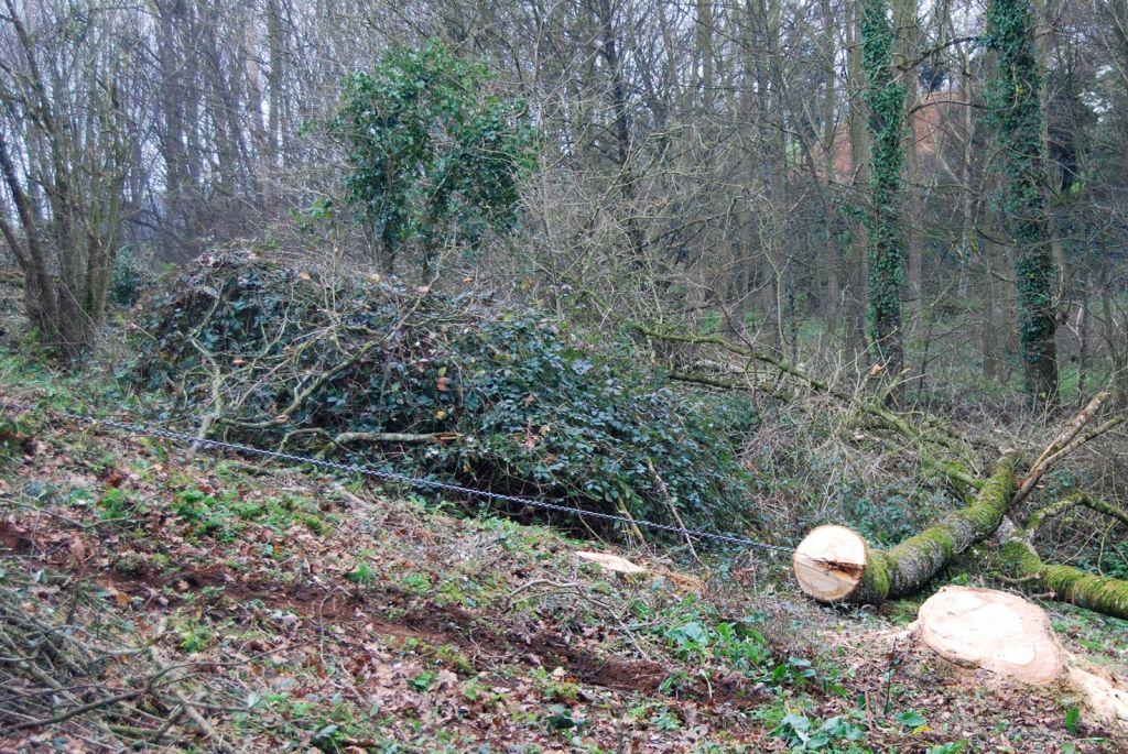 Debardage par treuil forestier à chaîne