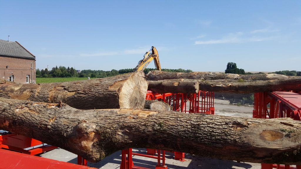 Production industrielle de bois de chauffage chez la société VROLAND