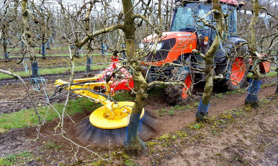 Brosse de desherbage sur tracteur vigneron