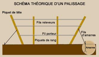 schema_pallisage_fils